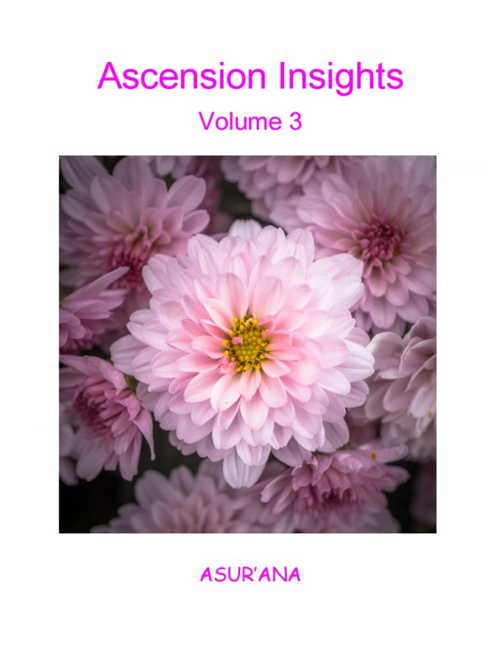 Ascension Insights, Volume 3 Book Cover
