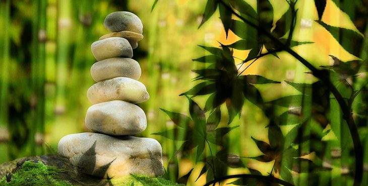 Image of 6 stones stack on top of each other in a bamboo forest. A Series Of Orders