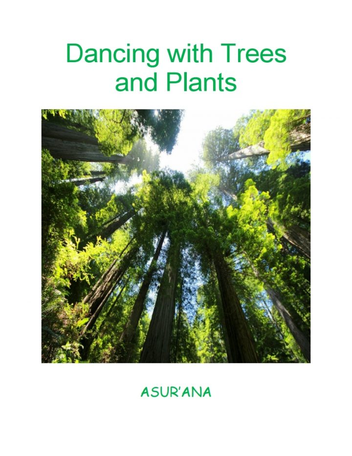 Dancing with Trees and Plants Book Cover