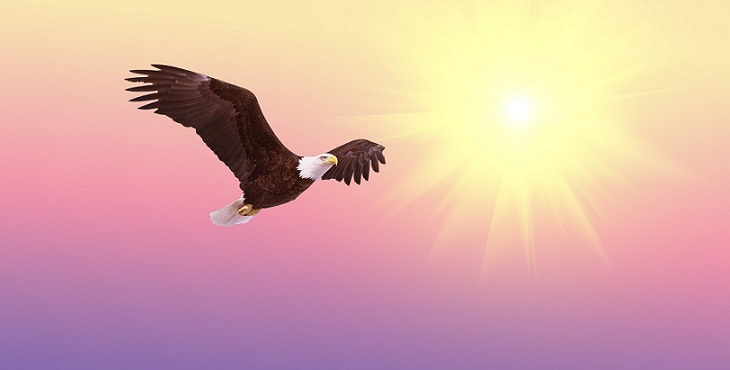 Image painting of an eagle flying high. Dancing Upon The Wings Of Eagles