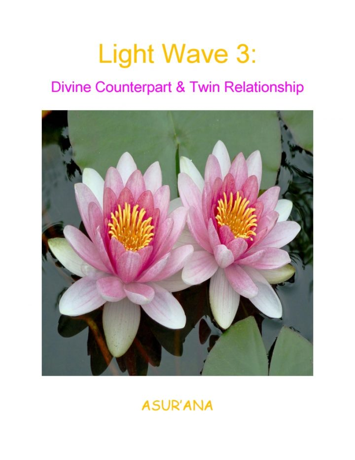 Light Wave 3 - Divine Counterpart and Twin Relationship Book Cover