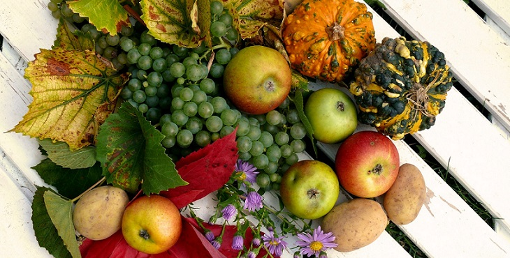 Image of abundance of a variety of fruits and vegetables. Abundance Blessings From The Tao